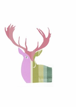 candy stripe stag