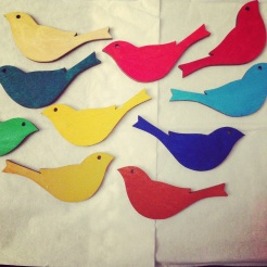 coloured birds